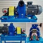 Gear Pump SS-316 Ropar CGSS 2