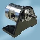 Gear Pump SS-316 Ropar CGSS 1