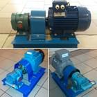 Gear Pump Ropar DW-II 4