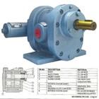 Gear Pump Ropar DW-II 3