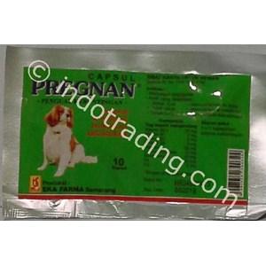 Obat Anti Keguguran Anjing Pregnan