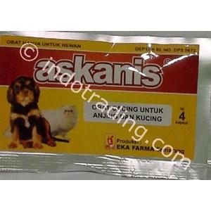 Obat Cacing Anak Anjing Askanis