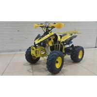 Motor ATV 110 Type PICO 1