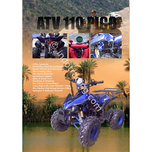 ATV 110 Cc Pico