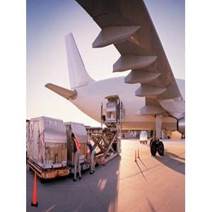 Layanan Pengangkutan Udara By PT. Trans Pratama Logistics