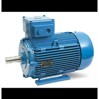 Pompa Motor Marelli (Explossion Proof Motor)