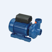 Pompa Air APP W-Series (Cast-iron Centrifugal Pump) 1