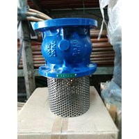 Foot Valve/Check Valve Tatzu