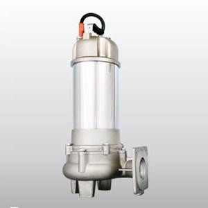 Sewage & Wastewater Pumps Tipe SB