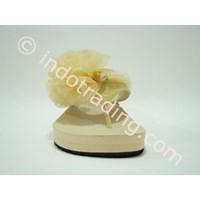 Distributor Sandal Dolphin 3