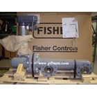 LEVEL CONTROLLERS 2500 FISHER 1