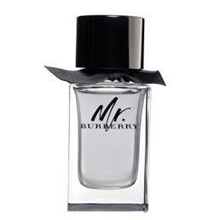 Burberry mr burberry parfum tester
