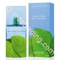 leau d issey pour homme pour l'ete 2011 parfum 1