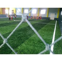 Distributor Rumput plastik Futsal  3