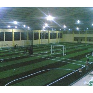 Dari Rumput Futsal Sintetis Tipe 6 3