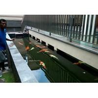 Beli Sistem filter dan  instalasi pada kolam & aquarium 4