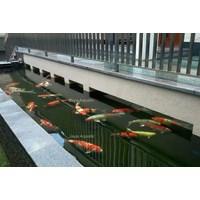 Jual Sistem filter dan  instalasi pada kolam & aquarium 2