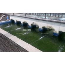 Sistem filter dan  instalasi pada kolam & aquarium