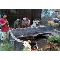 Distributor  - Kediaman Wakpolda Jatim 2014.    (Akuarium & Aksesoris) 3