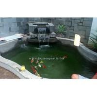 Upgrade kolam ikan -  Akuarium & Aksesoris 1
