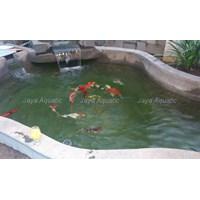Jual Upgrade kolam ikan -  Akuarium & Aksesoris 2