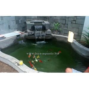 Upgrade kolam ikan -  Akuarium & Aksesoris