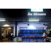 Distributor Resto Sea Monster Surabaya  - (Akuarium & Aksesoris) 3
