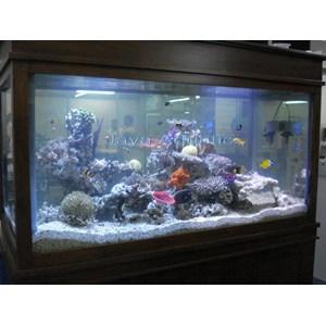 Aquarium 1.5 meter  -   Akuarium & Aksesoris