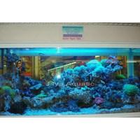 Aquarium 1.2 meter  -   Akuarium & Aksesoris 1