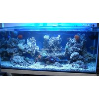 Aquarium 1.45 meter  -   Akuarium & Aksesoris 1