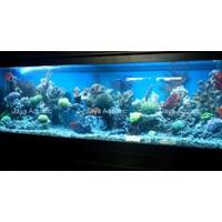 Jual Aquarium 2 meter  -   Akuarium & Aksesoris 2