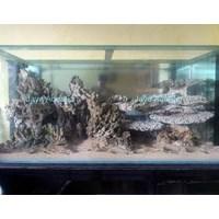 Beli Dekorasi karang  -   Akuarium & Aksesoris 4