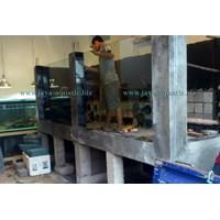 Distributor Aquarium ikan Pari  -   Akuarium & Aksesoris 3