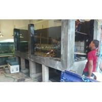 Beli Aquarium ikan Pari  -   Akuarium & Aksesoris 4
