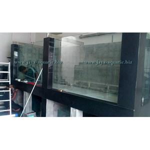 Aquarium ikan Pari  -   Akuarium & Aksesoris