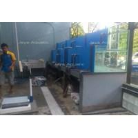 Distributor Resto Daun Lada 1  -   Akuarium & Aksesoris 3