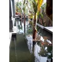Jual Kerta Jaya Regency  -   Akuarium & Aksesoris 2