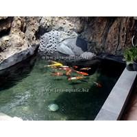 Jual Jasa pembuatan kolam ikan    (Akuarium & Aksesoris ) 2