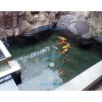 Jasa pembuatan kolam ikan    (Akuarium & Aksesoris ) 1