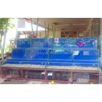 Distributor RM Apong  Makasar      (Akuarium & Aksesoris) 3