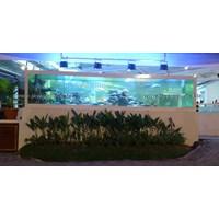Jual Aquarium Display Restoran  2