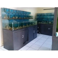 Distributor  - Kantor Kementerian Kelautan & Perikanan RI.   (Akuarium & Aksesoris) 3
