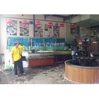 Distributor Akuarium Display Restoran 2.   ( Akuarium & Aksesoris ) 3