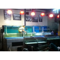 Beli Akuarium Display Restoran 2.   ( Akuarium & Aksesoris ) 4
