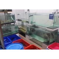Jual Resto Huang Table    ( Akuarium & Aksesoris ) 2