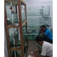 Distributor Resto Huang Table    ( Akuarium & Aksesoris ) 3