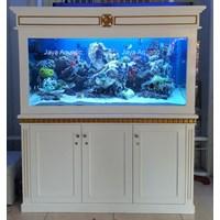 Distributor Aquarium Laut Kencana Lamongan ( Aquarium dan Aksesoris ) 3
