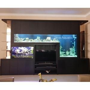 Giant Aquarium Laut Laguna Citiy (   Aquarium dan Aksesoris )