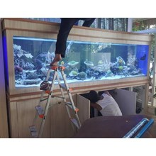 Giant Aquarium Laut PT. Aneka Rimba (   Aquarium dan Aksesoris )
