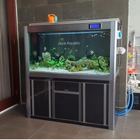 Distributor Aquarium Tawar Chova ( Aquarium dan Aksesoris) 3